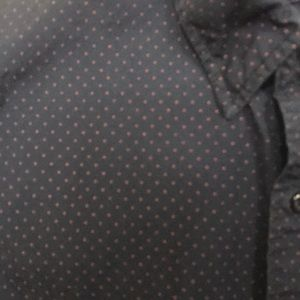 J Crew Dotted Button Down